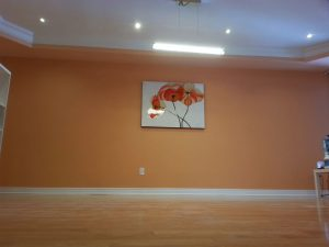 luxury living room with baseboard trim and ceiling potlights king city