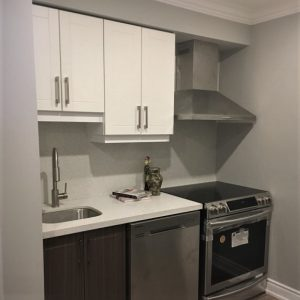 small kitchen renovation in basement newmarket